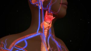 What causes thyroid problems